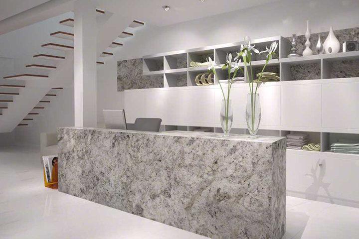 Msi Granite Salinaswhite